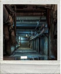 Подвал (катакомбы, бункер и т.д.)