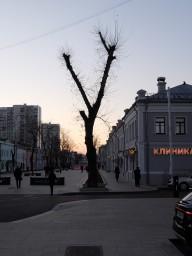 Прогулка на улицу Школьная