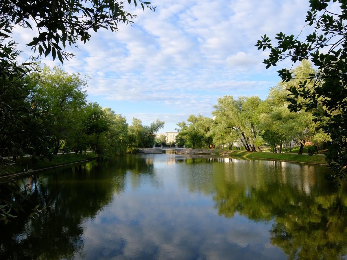 Новодевичий пруд